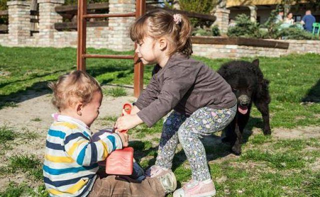 V Avstriji je otroški dodatek ukrep družinske politike in ga dobijo vsi otroci, višina je odvisna od njihove starosti. Foto Getty Images/istockphoto