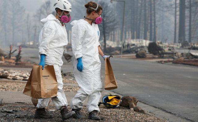 Mesto Paradise je pogorelo do tal. FOTO: Terray Sylvester/Reuters