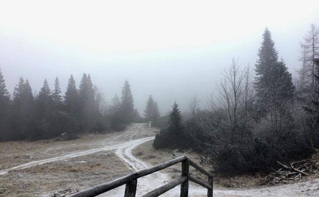 Višji predeli Slovenije so že dočakali sneg. Tako je bilo včeraj na Veliki Planini. FOTO: Velika Planina d.o.o.
