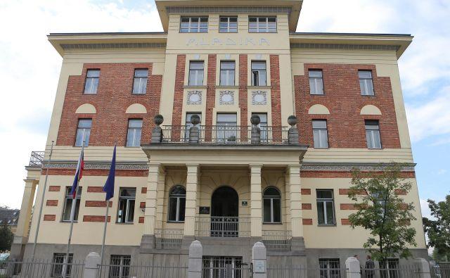Diplomati so kritični do slovenske zunanje politike. FOTO: Jo�že Suhadolnik