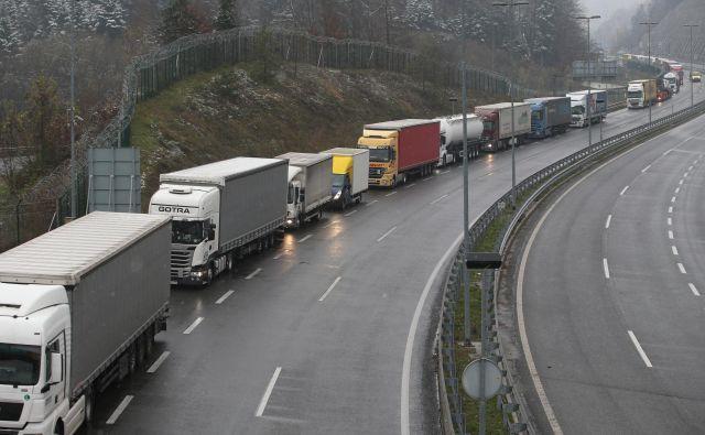Kolona tovornjakov zaradi stavke policistov na mejnem prehodu Gruškovje. FOTO: Tadej Regent/delo