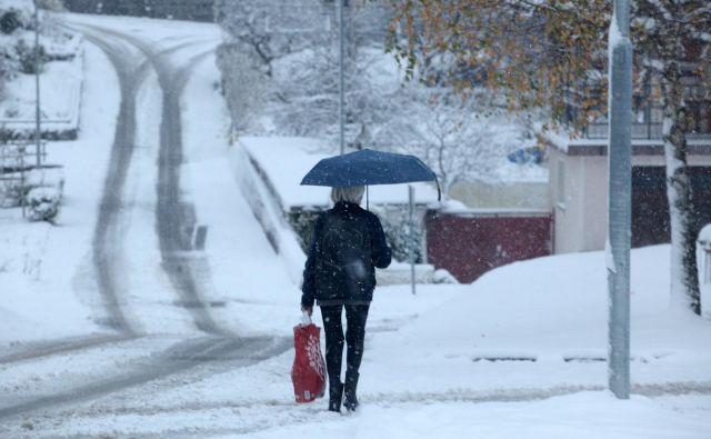 Po nižinah je zapadlo od pet do petnajst centimetrov snega, ki bo po napovedih vremenoslovcev hitro skopnel. FOTO: Mavric Pivk