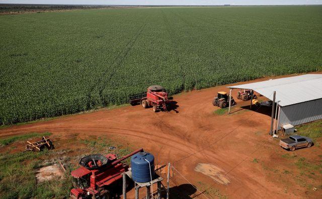 Brazilija je največja izvoznica kmetijskih pridelkov v Evropsko unijo. FOTO: Reuters