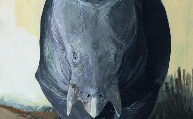 Tako naj bi bil videti Lisowicia bojani. FOTO: Karolina Suchan-Okulska