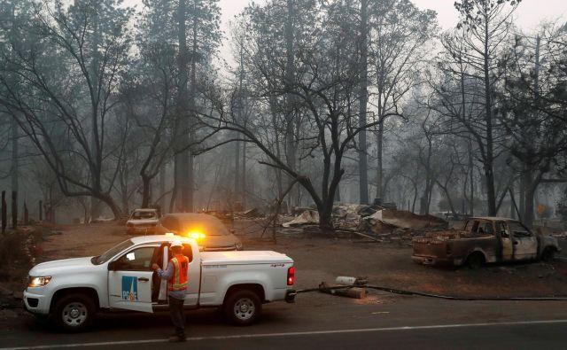 Razmah požarov na zahodu ZDA po mnenju strokovnjakov kaže, kako bodo podnebne spremembe spremenile razmere na planetu. FOTO Reuters