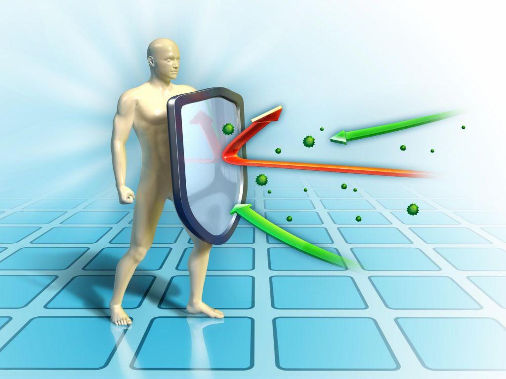 FOTO: Vpliv vadbe na imunski sistem