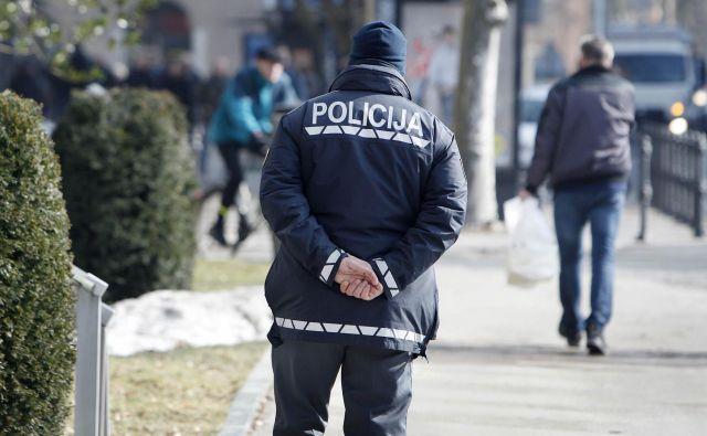 Opravili so 31 hišnih preiskav. FOTO: Leon Vidic/Delo