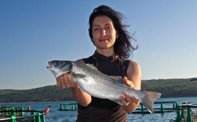 Trenutno je le manjši del gojenih rib res kvalitetnih, se pa razmere izboljšujejo. V naši družini smo sami biologi in prav zmanjšanje števila divjih rib je bil eden glavnih povodov za nastanek ribogojnice. FOTO: Osebni arhiv