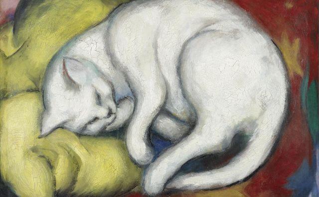 Franz Marc: Bela mačka na rumeni blazini, olje na kartonu