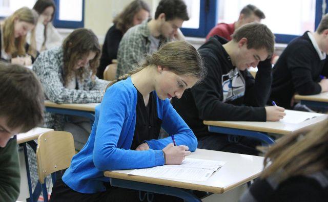 Petka na gimnaziji je več kot petka na strokovni šoli, pravi ravnateljica Gimnazije Vič Alenka Krapež. FOTO: Leon Vidic/Delo