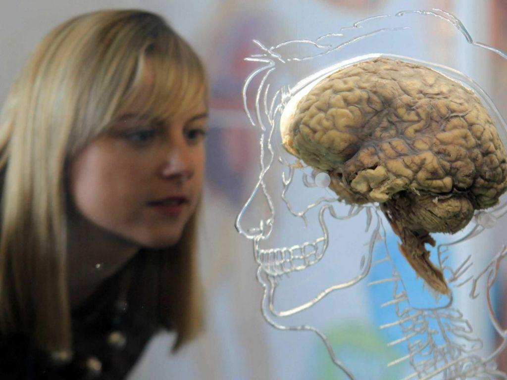 Učenje jezika upočasnjuje staranje možganov