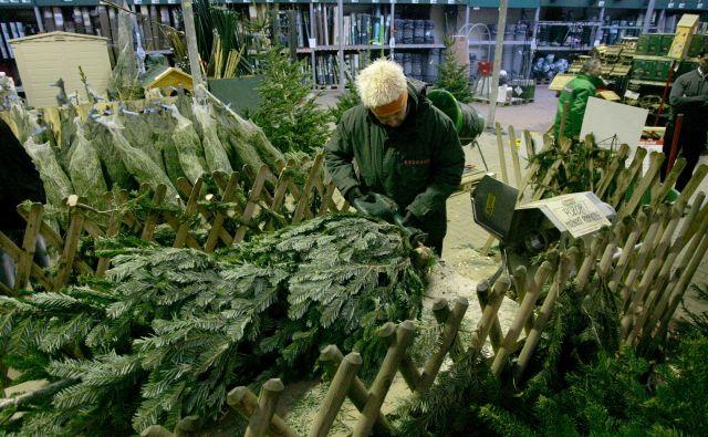 Gozdarji prodajo vsako leto manj nalepk za domača drevesca. FOTO: Mavric Pivk/Delo