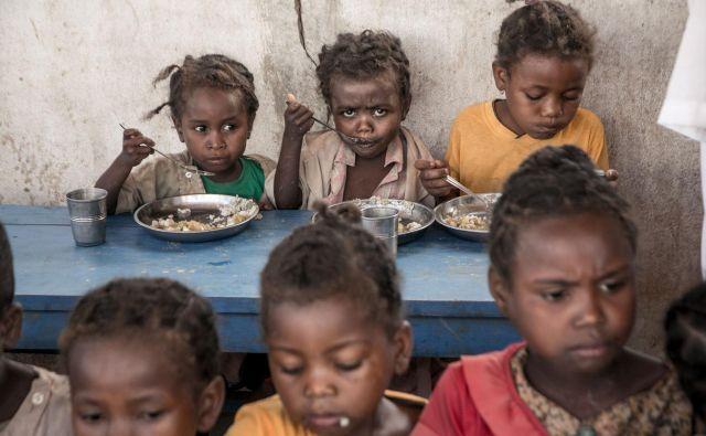 Deklice iz osnovne šole na Madagaskarju jedo kosilo, ki ga priskrbijo člani programa za preprečevanje podhranjenosti, le ta pa deluje v okviru svetovnega programa za prehrano. Že nekaj sezon je celoten južni del Madagaskarja ujet v sušo, zaradi katere je bila voda vse redkejša in je celo prizadela rasti riža, glavnega vira hrane. Foto Rijasolo Afp
