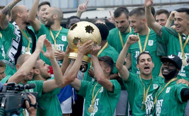 Olimpija je v letošnjem finalu s 6:1 premagala Aluminij. FOTO:o Roman Š�ipić/Delo