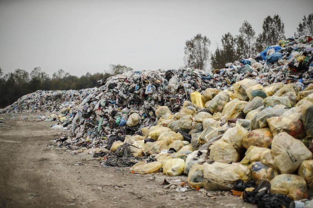 FOTO:V Indiji svete krave še žvečijo plastiko