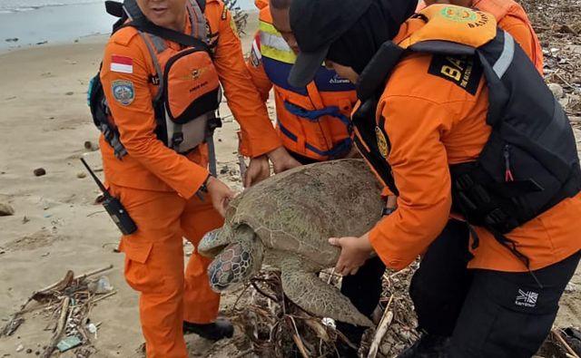 Potem ko so pomagali ljudem, so pomagali še živalim.<br /> FOTO: AFP