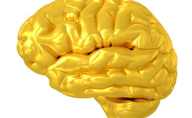 Einsteinovi možgani so za Thomasa Stoltza Harveyja po nenavadnem spletu okoliščin postali svetinja in obsedenost, ki mu je uničila življenje. Foto Shutterstock