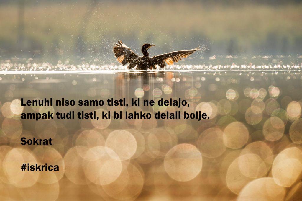 FOTO:Iskrica