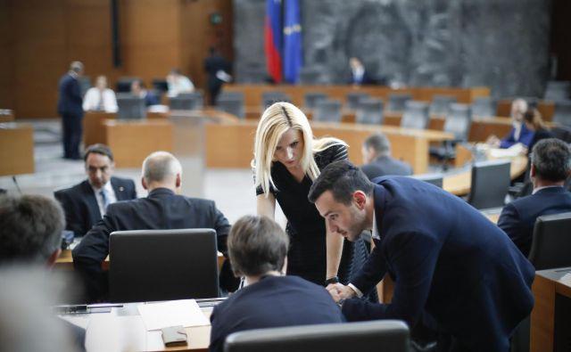 Pred poslanci, ki bodo 10. januarja vnovič začeli redna zasedanja, bodo najprej na vrsti kadrovska vprašanja. FOTO: Uroš Hočevar/Delo