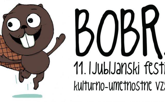 Foto Festival Bobri
