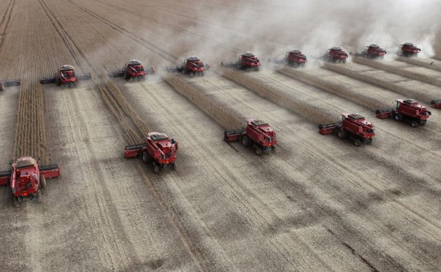 Ameriški delež v evropskem uvozu soje je že 74,5-odstotni. FOTO: Reuters