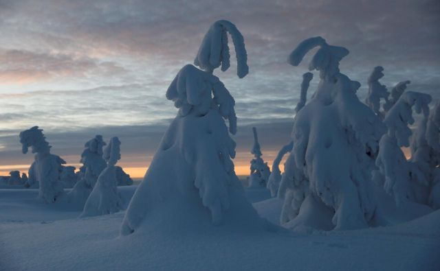 Zasnežena gora Szczyrk na Poljskem. FOTO: Kacper Pempel/ Reuters