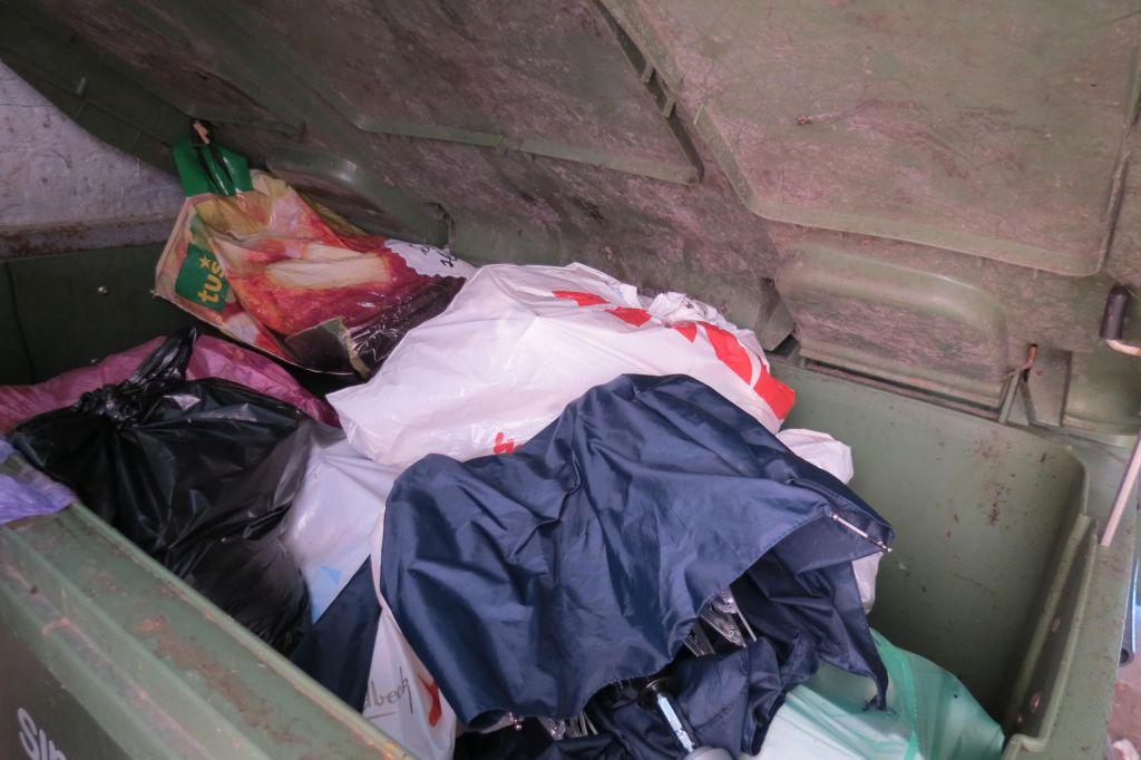 Tržaški podžupan po blamaži s»čiščenjem Trsta« prejel še 100 evrov kazni, ker ne zna ločevati odpadkov