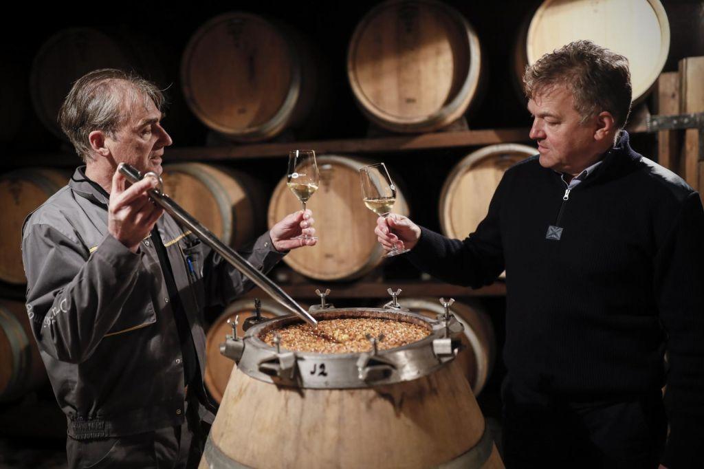 FOTO:Kakovostno vino, ki pa ga premalo ljudi pozna in ceni