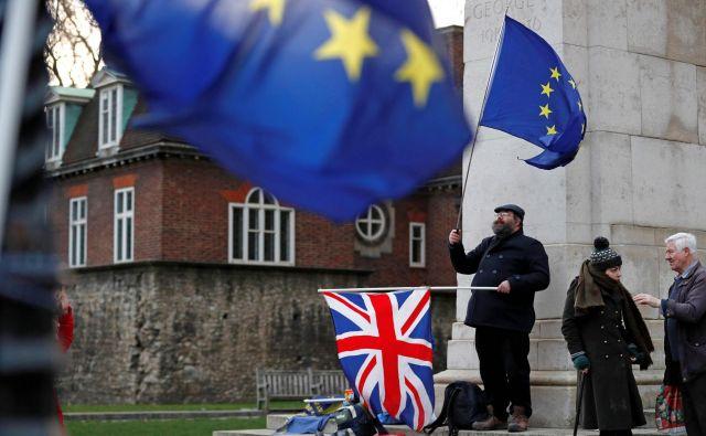 Nasprotniki brexita protestirajo pred britanskim parlamentom. FOTO: Adrian DENNIS / AFP