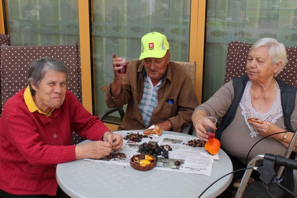 FOTO:Slovenski domovi za starejše so povsem zasedeni, kako je v Avstriji?