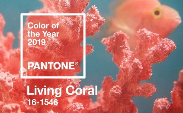 barva leta je odtenek s številko 16-1546 Foto Arhiv Pantone