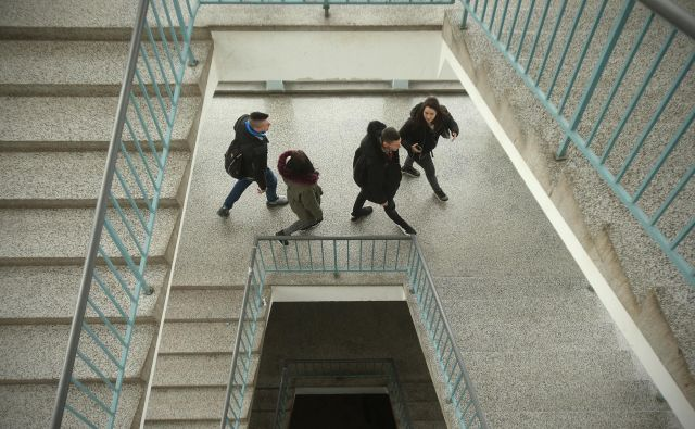 Največ prostih mest bo v prihajajočem šolskem letu na voljo v programih srednjega strokovnega izobraževanja. FOTO: Jure Eržen/Delo
