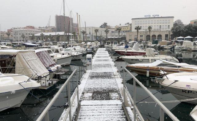 Sneženje na Obali. FOTO: Aljaž Vrabec/Delo