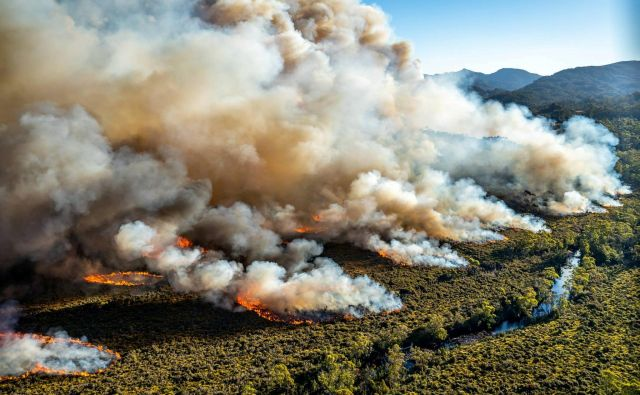 Iz Tasmanije poročajo, da so nekateri požari zelo obsežni. FOTO: Reuters