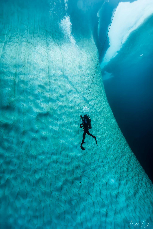 FOTO:Koralne grebene in ribice bom hodila gledat, ko bom stara gospa