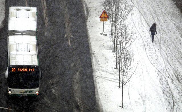 Na enki in šestici od ponedeljka nekaj manj avtobusov FOTO Roman Šipić/Delo
