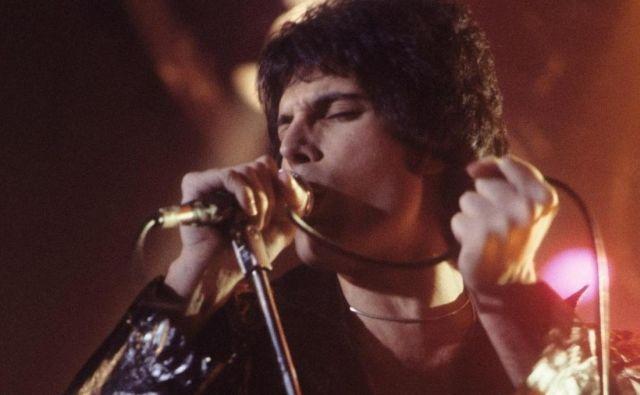 Freddie Mercury naj bi v svoji vili v Londonu imel okoli deset mačk. Eni je posvetil pesem, drugim pa cele albume. FOTO: Wikimedia Commons