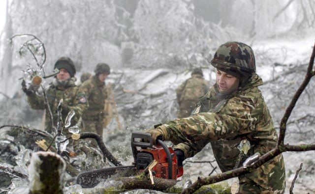 V okolici Pivke so na pomoč priskočili vojaki. FOTO: Voranc Vogel/Delo