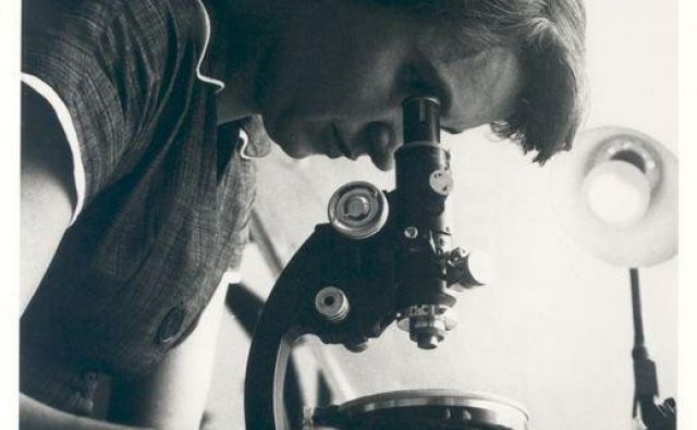 Rosalind Franklin FOTO: MRC Laboratory Of Molecular Biology