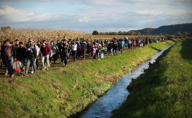 Velika večina priseljencev bo v Nemčijo prišla iz držav zunaj EU. Pametno bi bilo, da pridejo na organiziran in urejen način. Foto Jure Eržen
