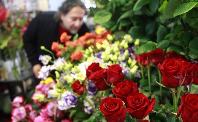 Največ rezanega cvetja, tudi vrtnic, je uvoženega iz Nizozemske, Ekvadorja in Kenije. FOTO: Roman Šipić
