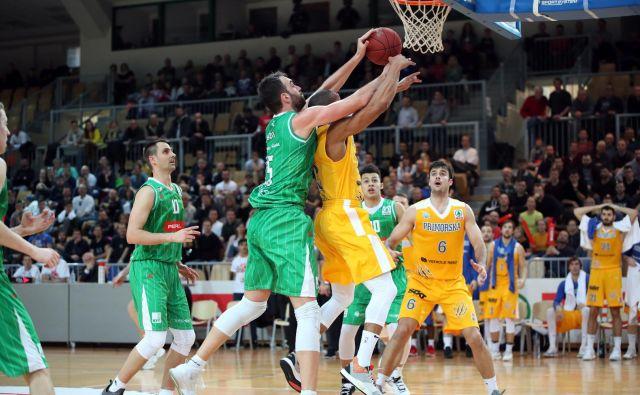 Košarkarji Sixta Primorske so tako kot lani v Tivoliju izločili Olimpijo v pokalnem polfinalu. FOTO: Petrol Olimpija
