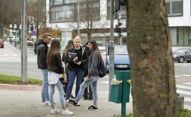 V iniciativi Mladi za podnebno pravičnost so zaskrbljeni za prihodnost sveta, v katerem mladi odraščajo. FOTO: Leon Vidic/Delo