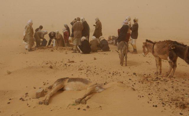 Vasi zasipa pesek, kmetje izgubljajo še zadnje krpice plodne zemlje, nomadi pa so ostali brez čred. Ljudje v Darfurju zato nujno potrebujejo vodo. FOTO: Olivier Jobard