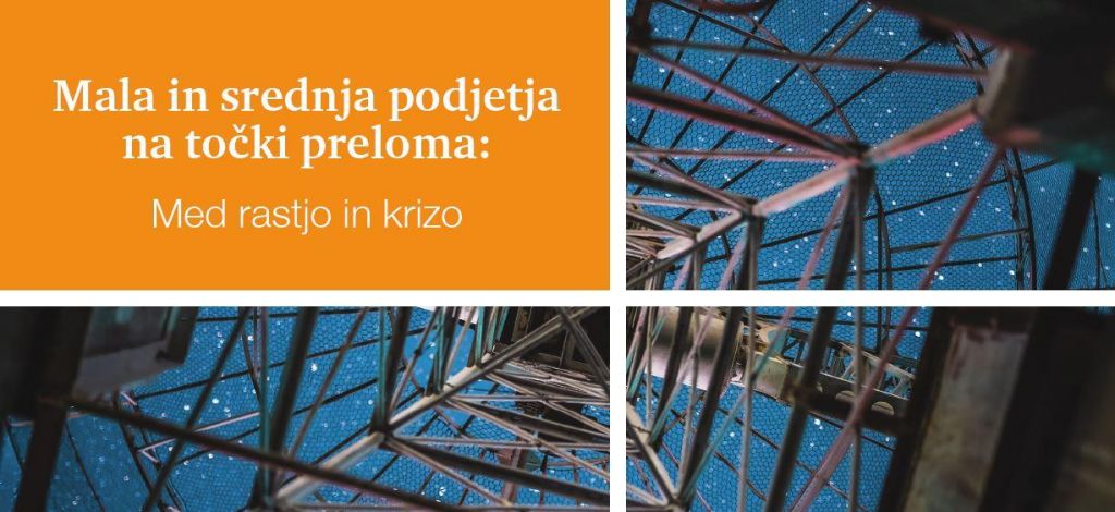 Slovenija – dežela malih in srednje velikih podjetij