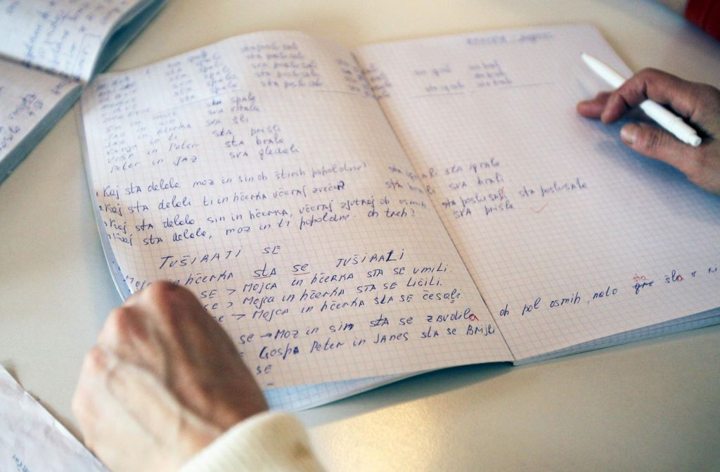 Strah, pogum in pouk slovenščine