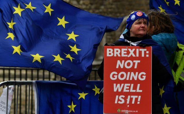 Protestniki pred britanskim parlamentom. FOTO: Ben Stansall/AFP