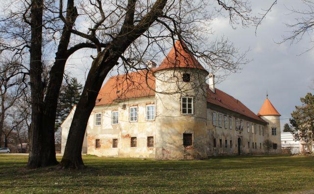Občina Beltinci je v grad vložila že pol milijona evrov lastnega denarja. FOTO: Jože Pojbič/Delo