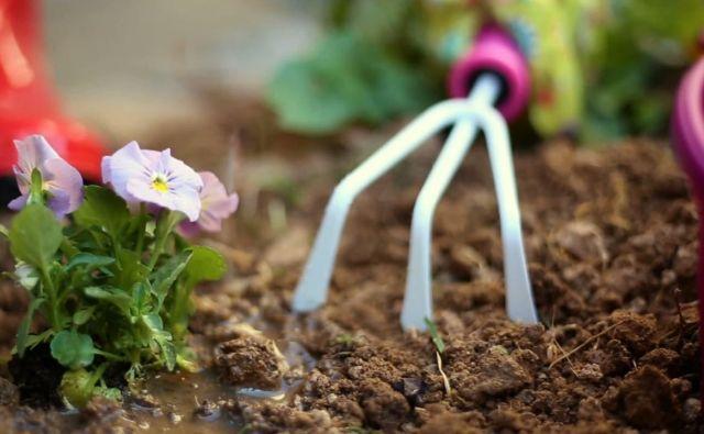 Pomlad je pred vrati in s tem tudi nova sezona za vrtičkarske mojstre. FOTO: Wochit
