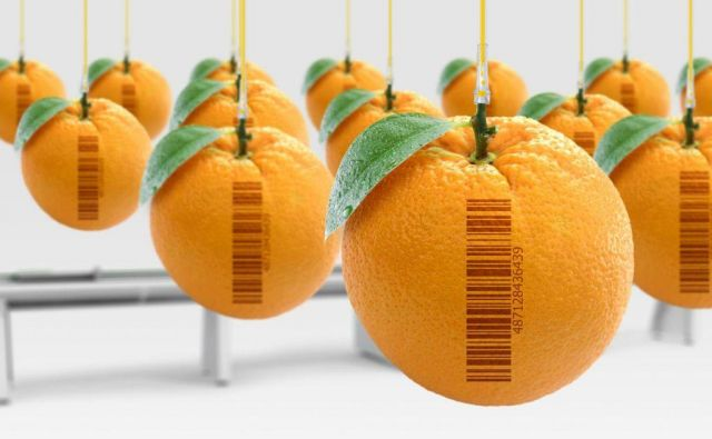 pomaranča Foto Shutterstock